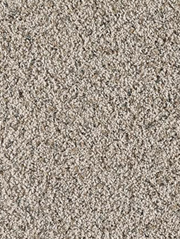 Textured Plush Carpeting Pittsburgh